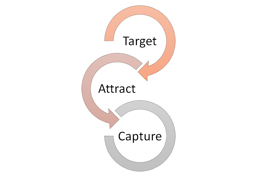 lifecycle marketing - Collect Leads
